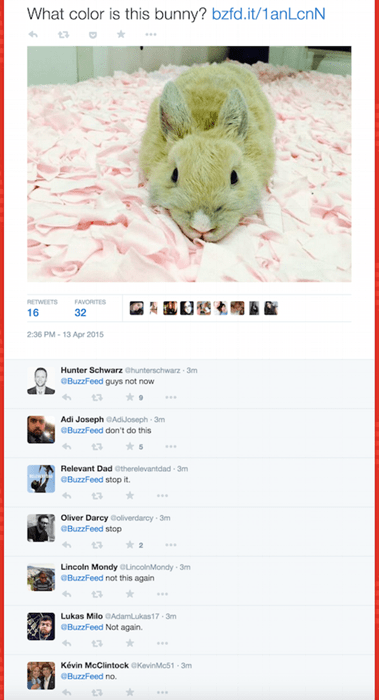 funny-twitter-fail-pic-buzzfeed-bunny-the-dress