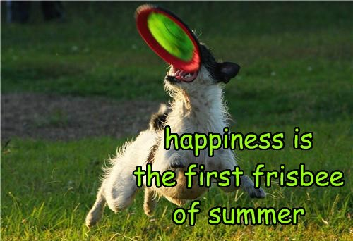 happiness is the first frisbee of summer