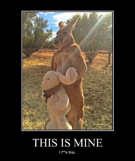wtf stuffed animal kangaroo bunny funny - 8478287104