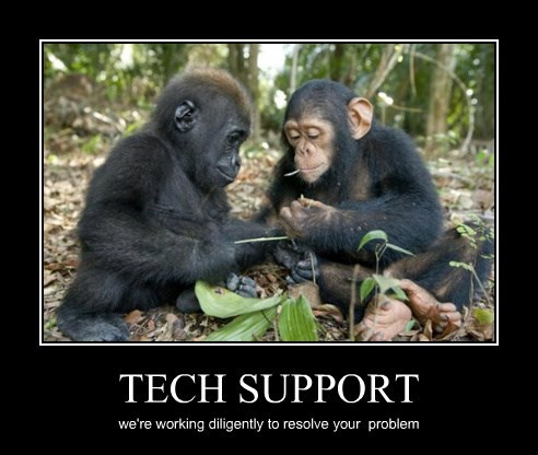 chimpanzee captions funny - 8478374144