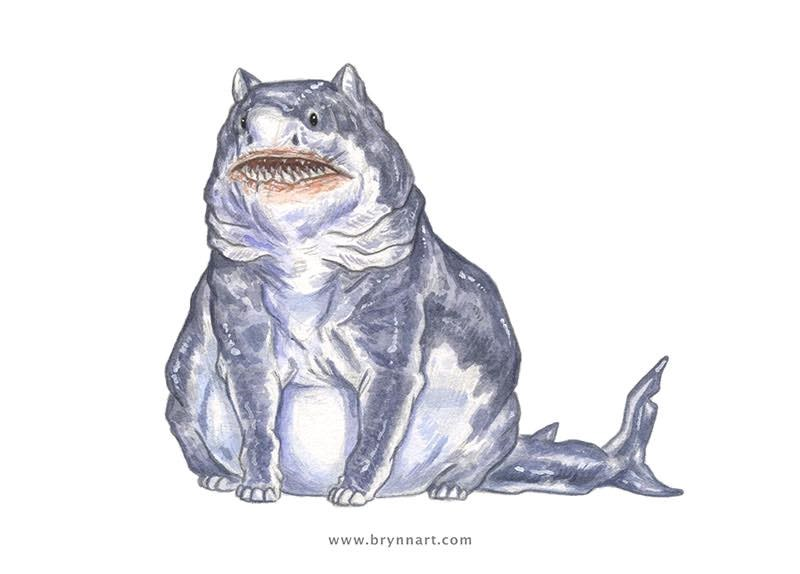 cat drawing art sharks shark illustration Cats - 847877