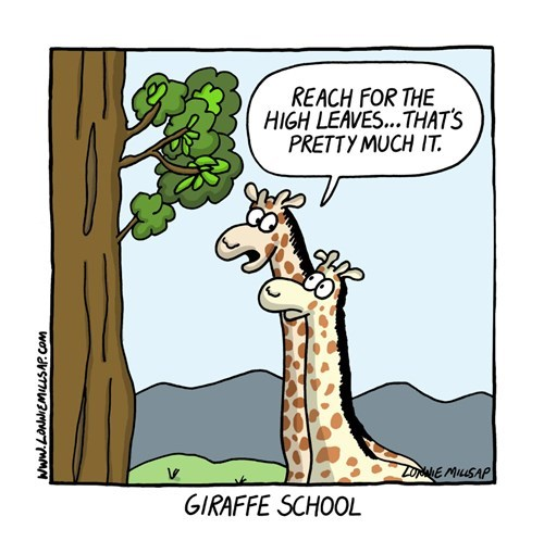 funny-web-comics-much-more-useful-than-a-college-education