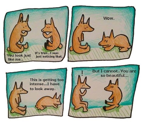 funny-web-comics-doggy-narcissists
