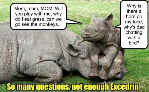 headache baby animals rhino kids mom - 8479712256