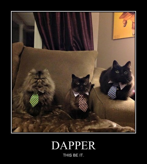 DAPPER THIS BE IT.
