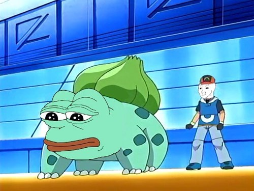 pokemon memes pepe bulbasaur