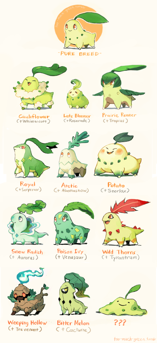 pokemon memes crossbred chikorita variations