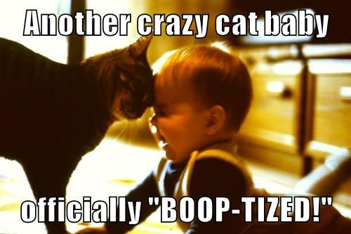 "Another crazy cat baby officially ""BOOP-TIZED!"""