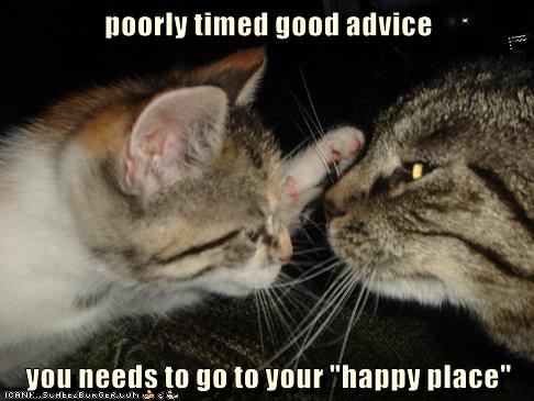 "poorly timed good advice you needs to go to your ""happy place"""