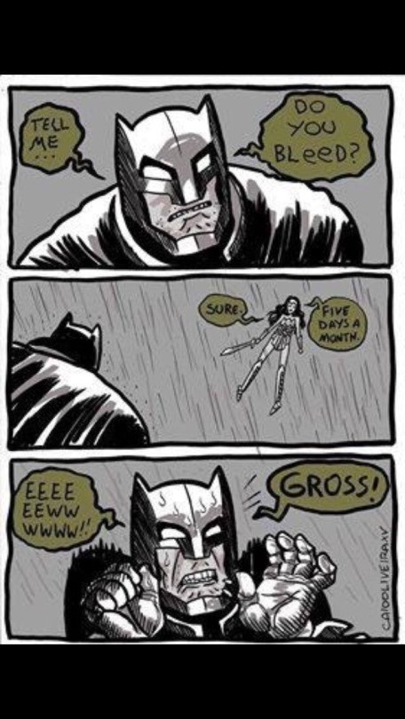 funny-web-comics-wonder-woman-teaches-batman-some-facts-about-life