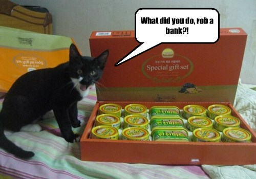 black cat looking surprised next to box of tuna cans on bed