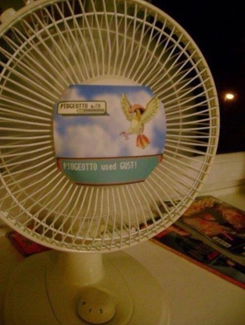 pokemon memes pidgeotto fan