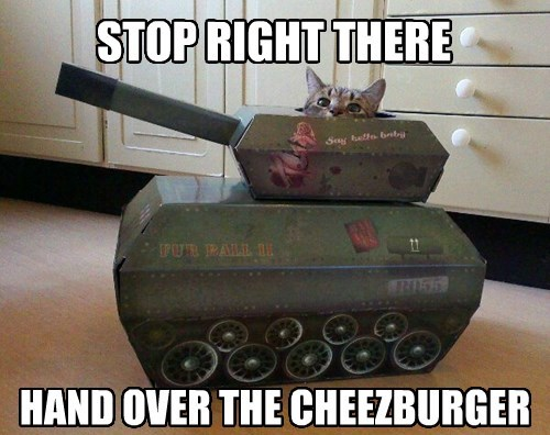 cheezburger war tank Cats unite