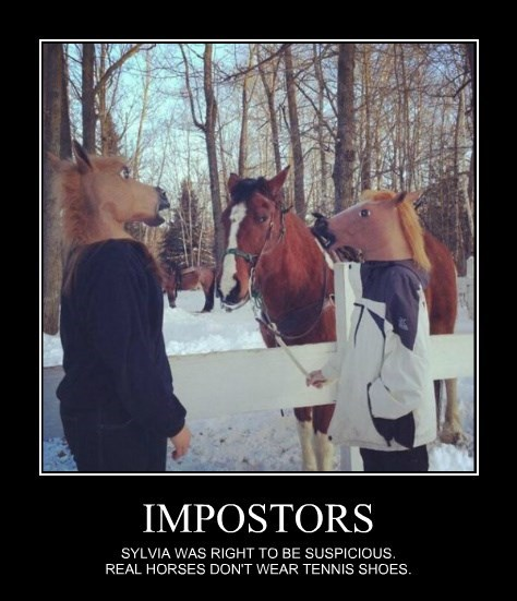 hooves,shoes,impostor,horse