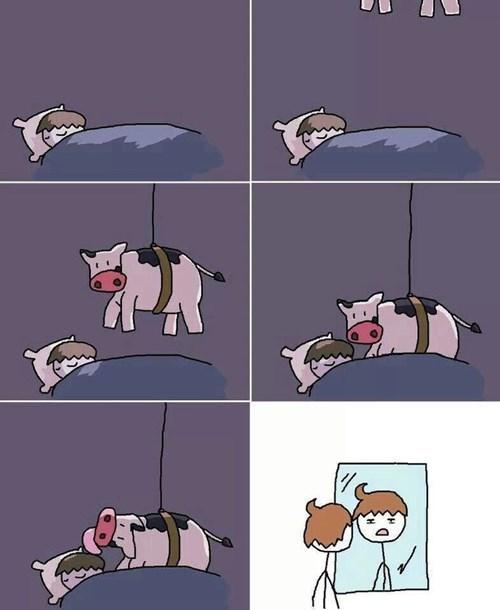 lamido de vaca