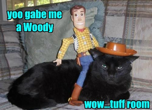 yoo gabe me a Woody wow...tuff room