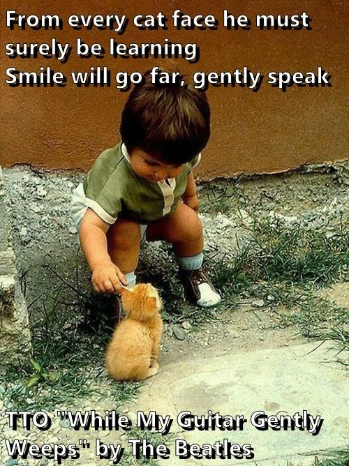 "From every cat face he must surely be learning                      Smile will go far, gently speak  TTO ""While My Guitar Gently Weeps"" by The Beatles"
