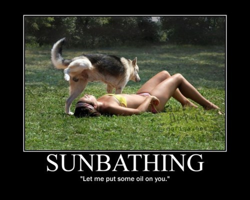 that dog just wants to make sure you don't get skin cancer