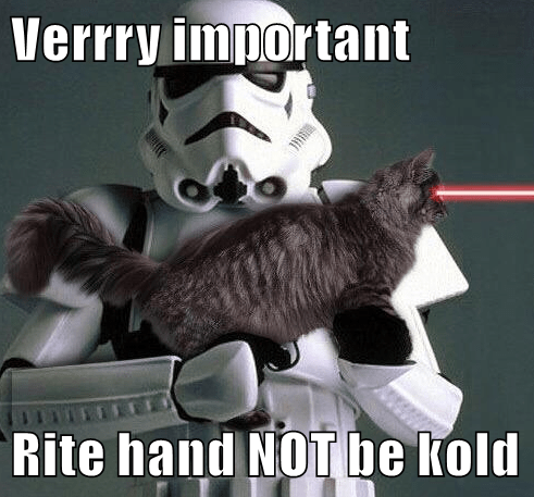 Cats,blaster,laser,star wars,rifle,stormtroooper