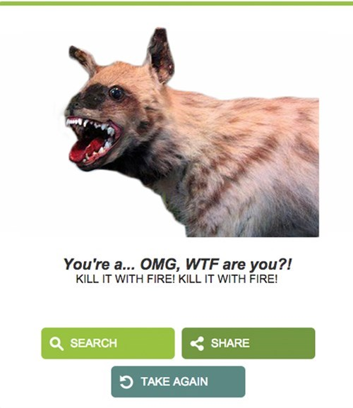 Hyena - You're a... OMG, WTF are you?! KILL IT WITH FIRE! KILL IT WITH FIRE! SEARCH SHARE TAKE AGAIN
