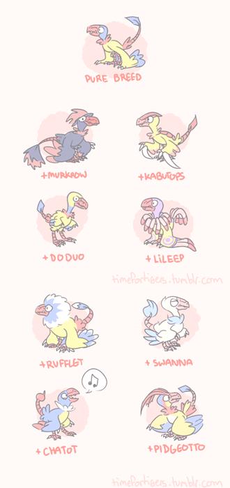 pokemon memes archen variations