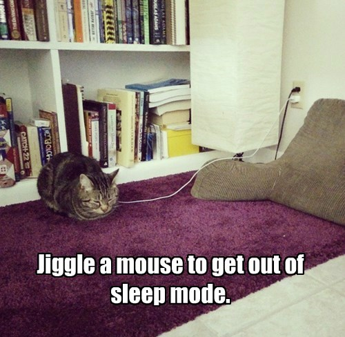 Jiggle a mouse to get out of sleep mode.