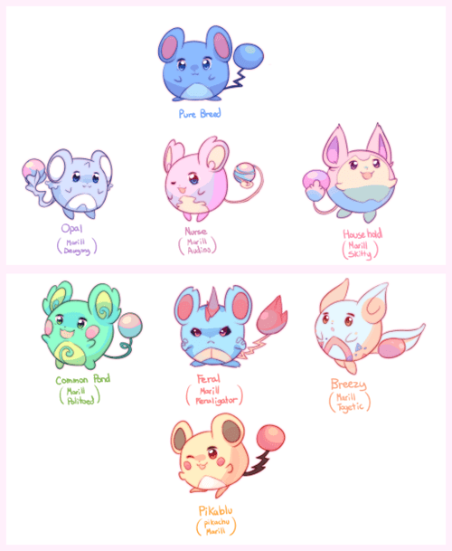 pokemon memes marill breeding variations