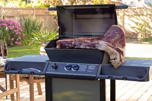 epic-win-pic-barbecue-grill