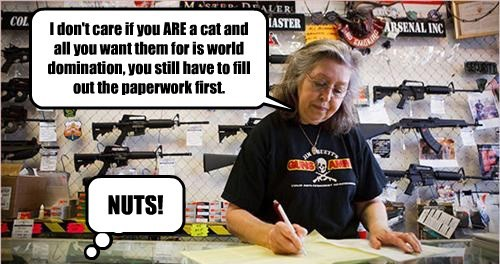 I don't care if you ARE a cat and all you want them for is world domination, you still have to fill out the paperwork first. NUTS!