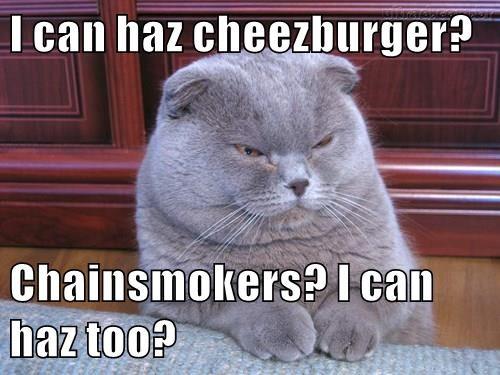 Cheezburger Image 8483032576
