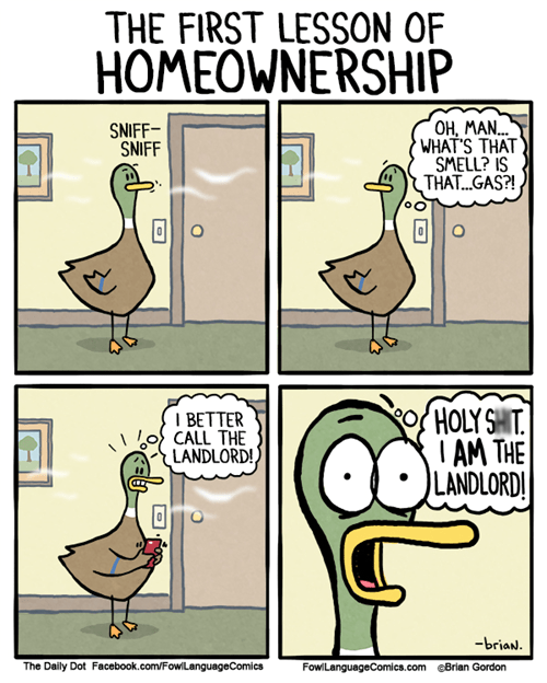 funny-web-comics-the-first-lesson-of-homeownership