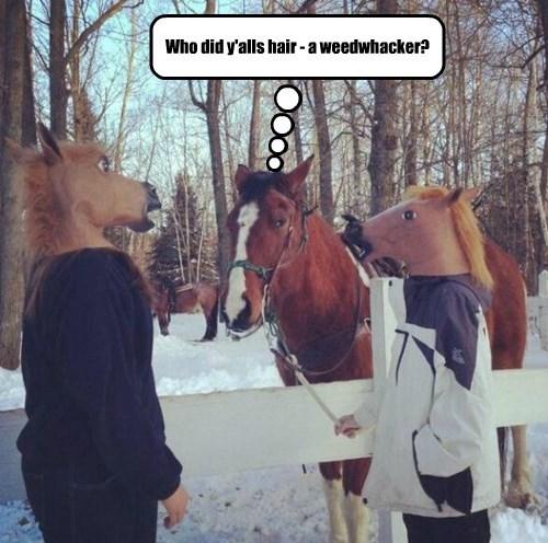horse mask horse - 8483485696