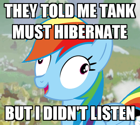 tank i didn't listen rainbow dash - 8483574784
