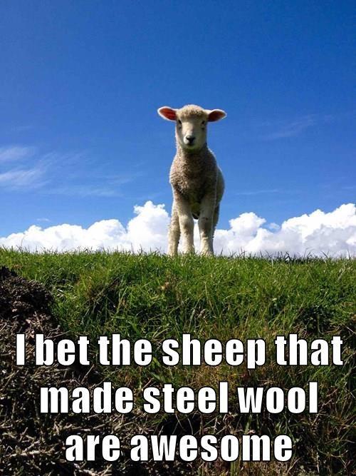 animals metal puns sheep wool - 8484036096