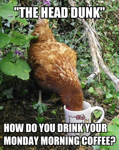 chicken mugs coffee mondays - 8484164352