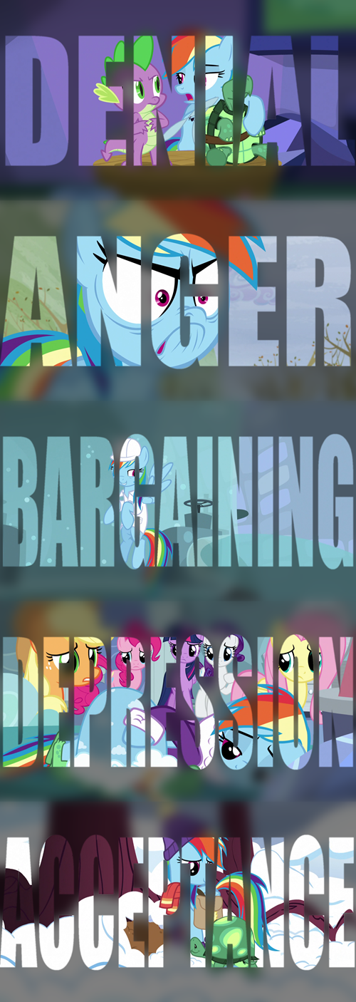 tank,grief,hibernation,rainbow dash,stages