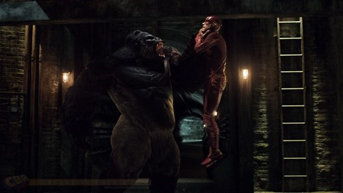superheroes-flash-dc-gorilla-grodd-upcoming-villain-screen-caps
