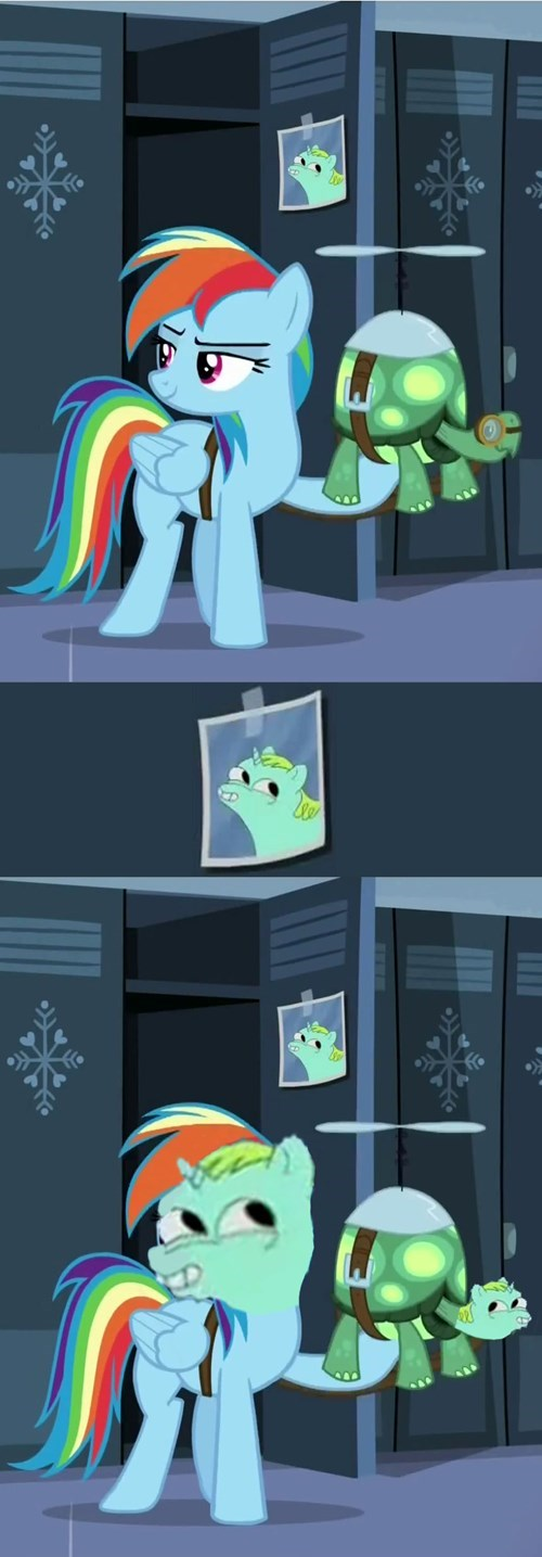 dat face,MLP,rainbow dash