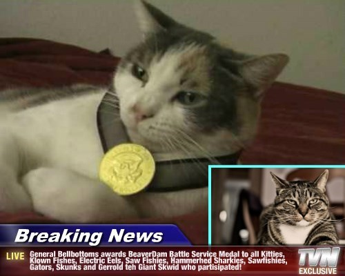 Breaking News - General Bellbottoms awards BeaverDam Battle Service Medal to all Kitties, Klown Fishes, Electric Eels, Saw Fishies, Hammerhed Sharkies, Sawfishies, Gators, Skunks and Gerrold teh Giant Skwid who partisipated!