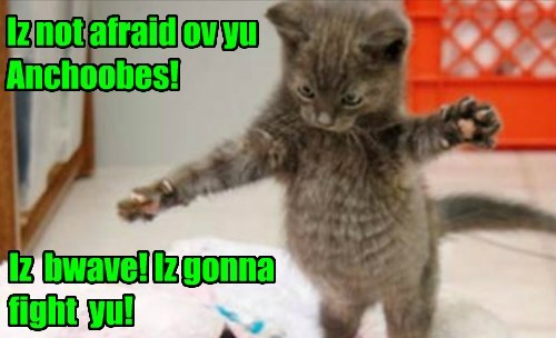 Iz not afraid ov yu Anchoobes!