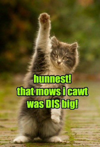 hunnest! that mows i cawt was DIS big!