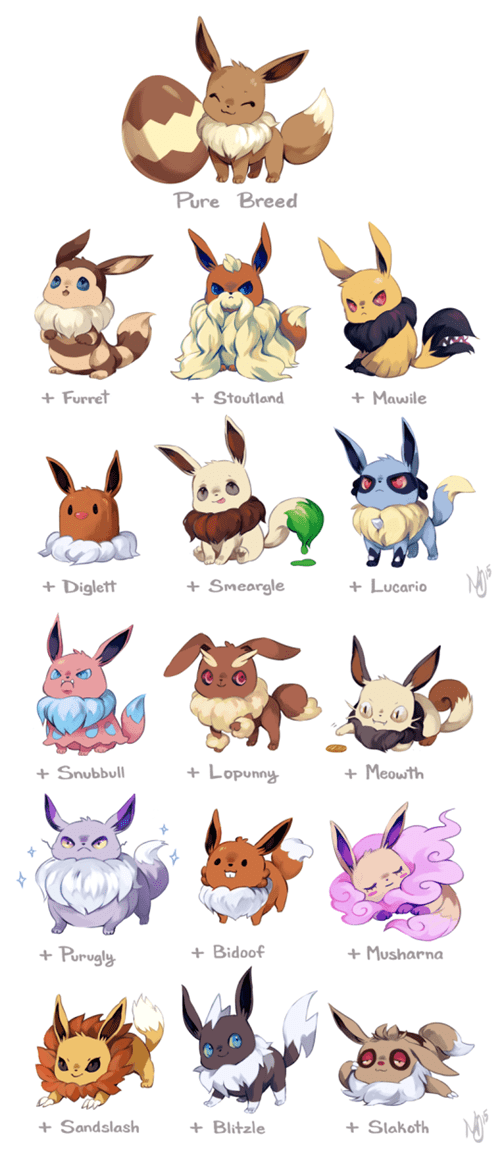 pokemon memes eevee breeding variations