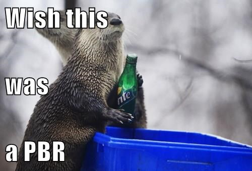 animals beer soda pbr otter sprite - 8485079040