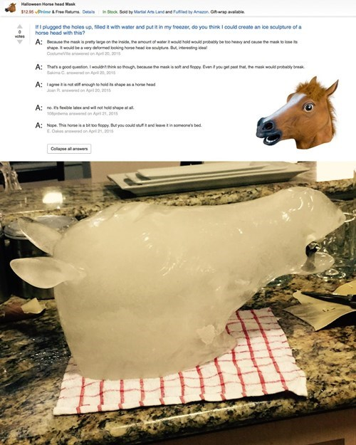 funny-win-pic-horse-head-ice-sculpture
