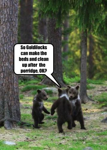 bears goldielocks cubs - 8485699072