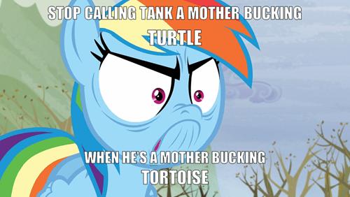 u mad tortoise tank rainbow dash - 8486676992