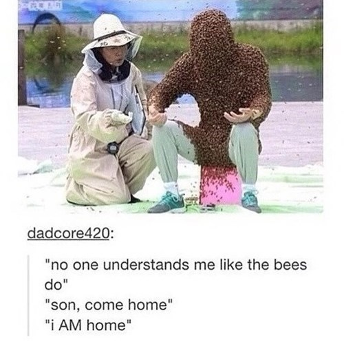 funny-tumblr-pic-bees