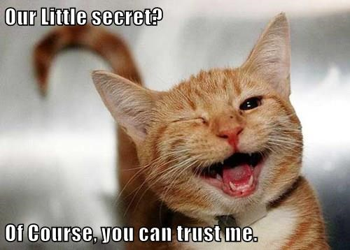 Our Little Secret Of Course You Can Trust Me Lolcats Lol