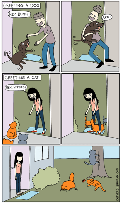 funny-web-comics-the-difference-between-cats-and-dogs