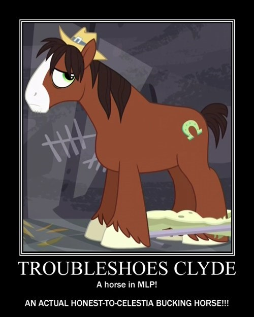 trouble shoes,wat,horse
